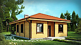 Project of Wooden House 99_1